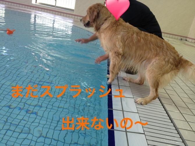 201211272142595eb.jpg