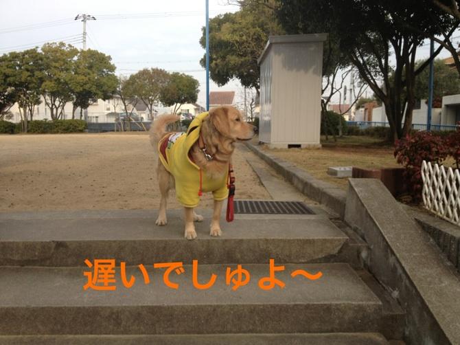 20121129214846b83.jpg