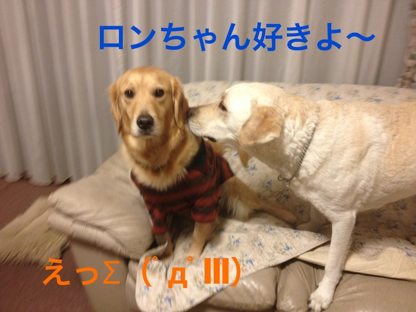 201211302302416f0.jpg