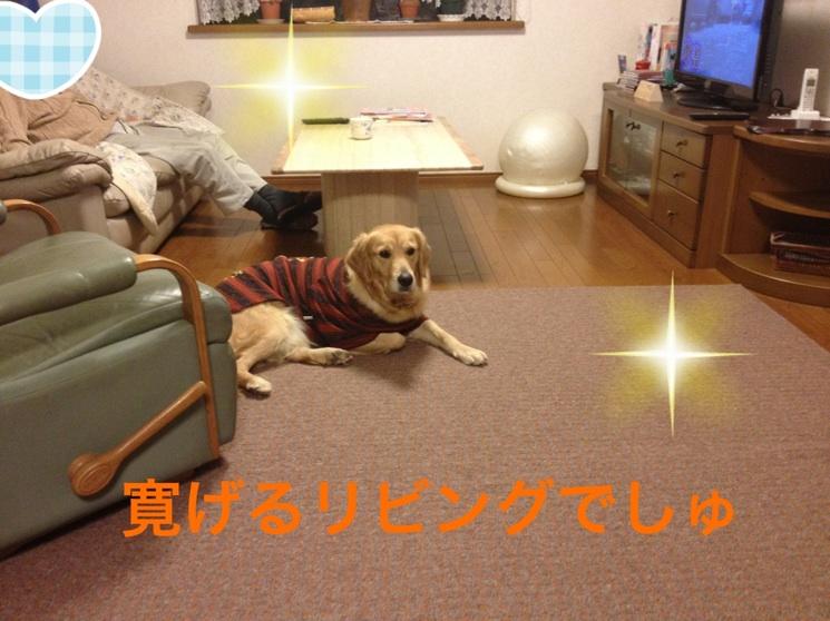 201211302303210a7.jpg