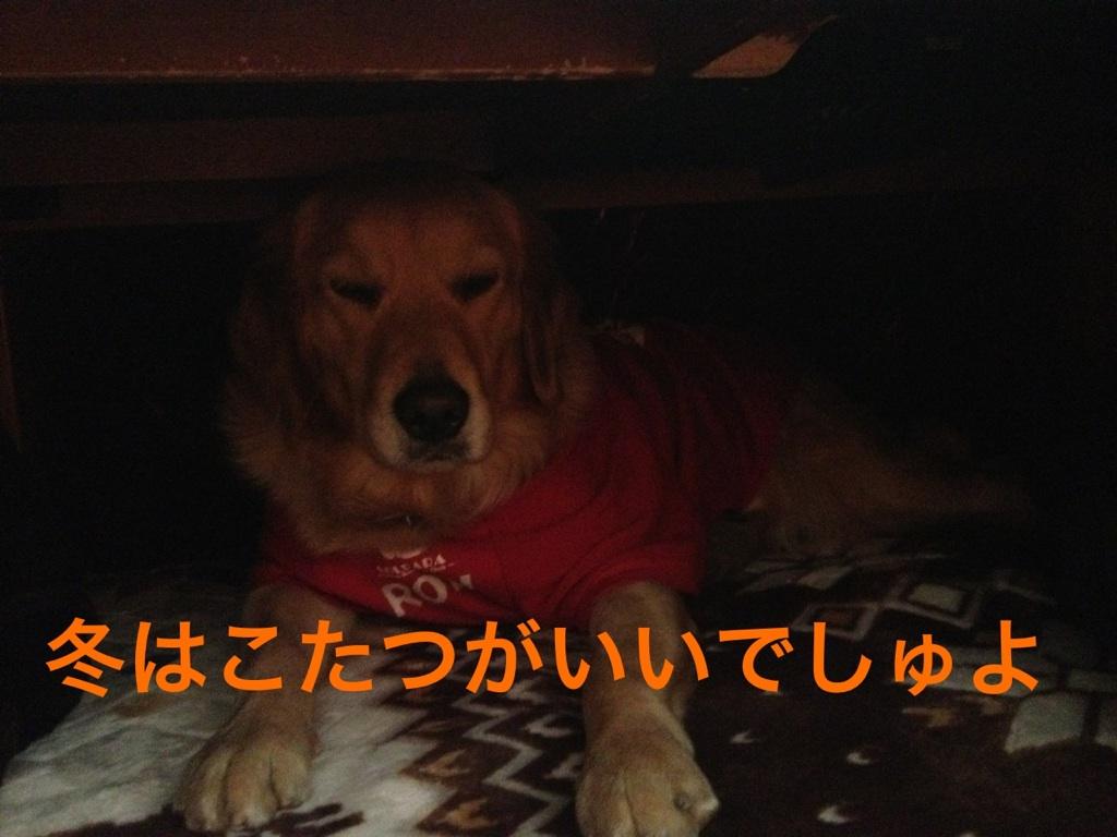 201212120744206fb.jpg