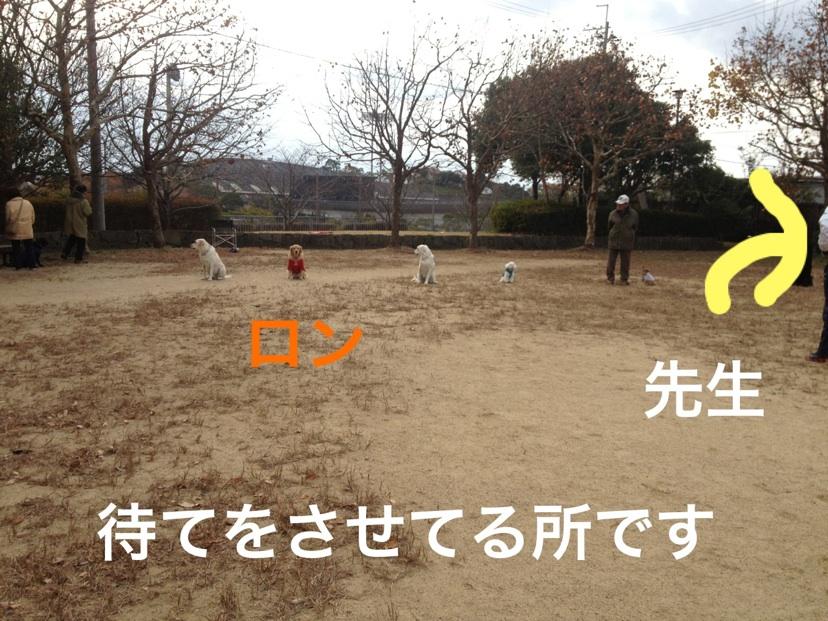 2012121323241812a.jpg