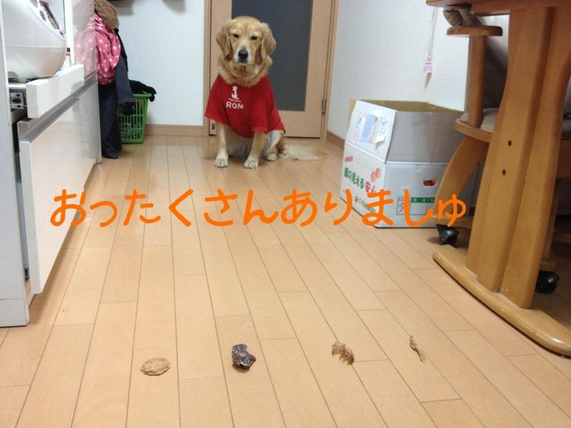 201212192137144b5.jpg