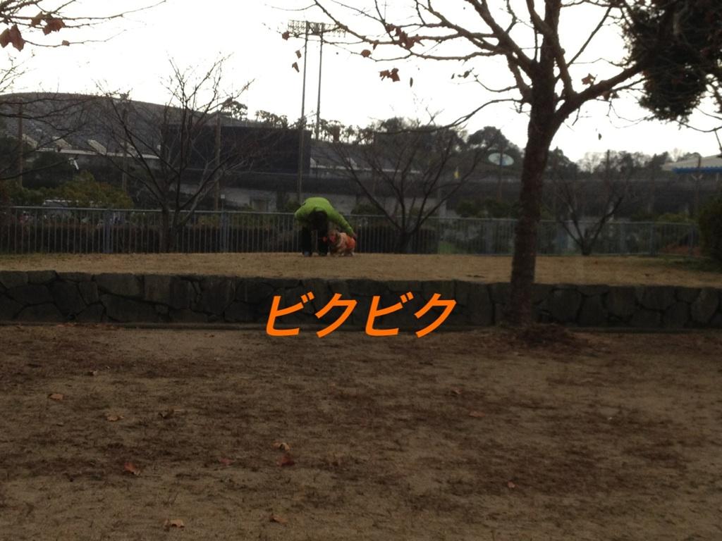 201212262140363e1.jpg