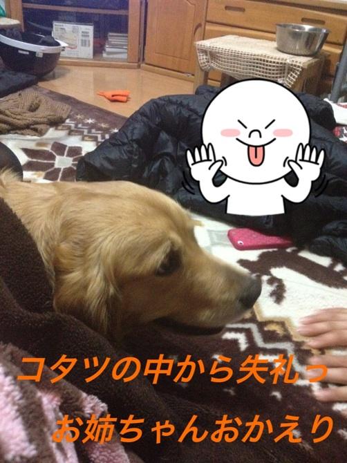 20130113223818cb1.jpg