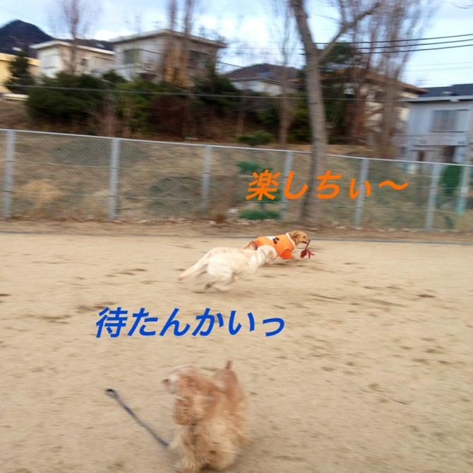 20130117230430d7e.jpg