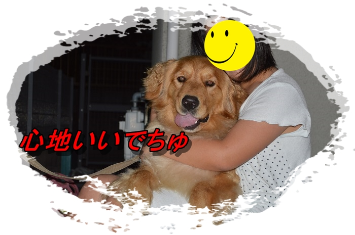 DSC_0112_20130624225641.jpg