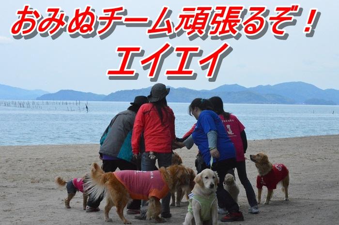 DSC_0231o_20130513175045.jpg