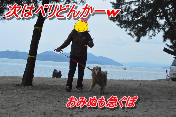 DSC_0274_20130514223320.jpg