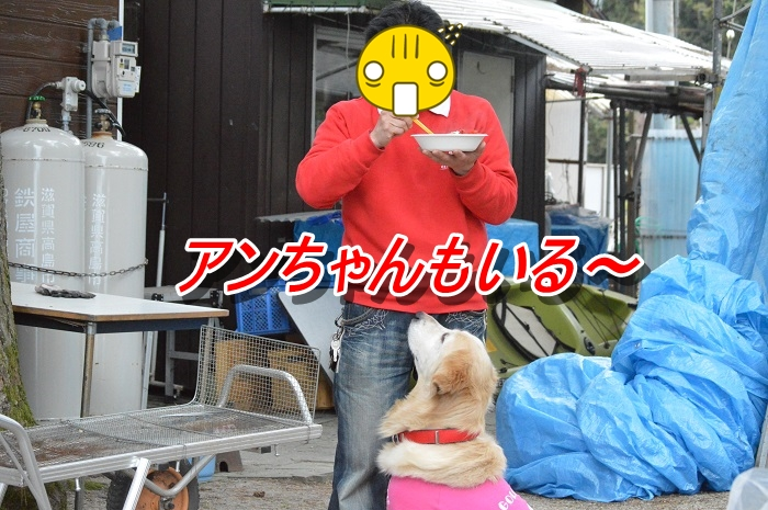 DSC_0318_20130515212142.jpg