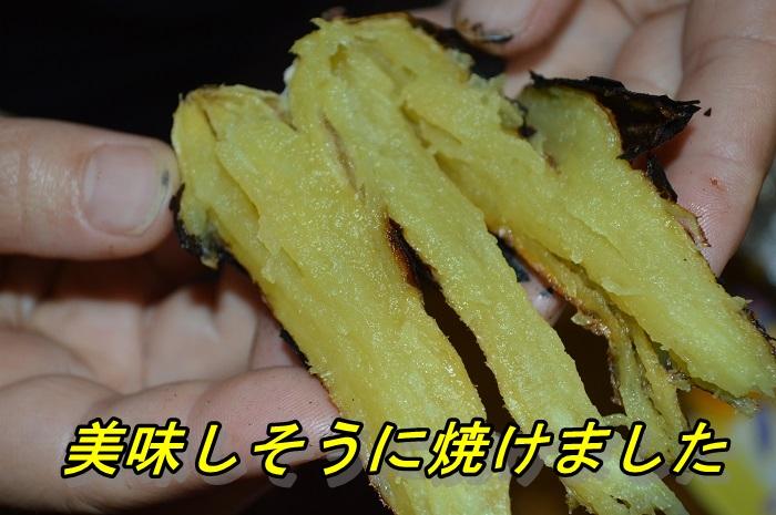 DSC_0403i.jpg