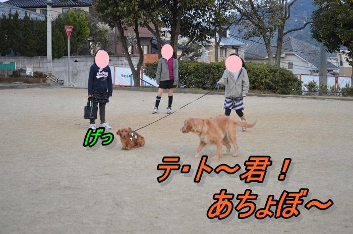 DSC_0586.jpg