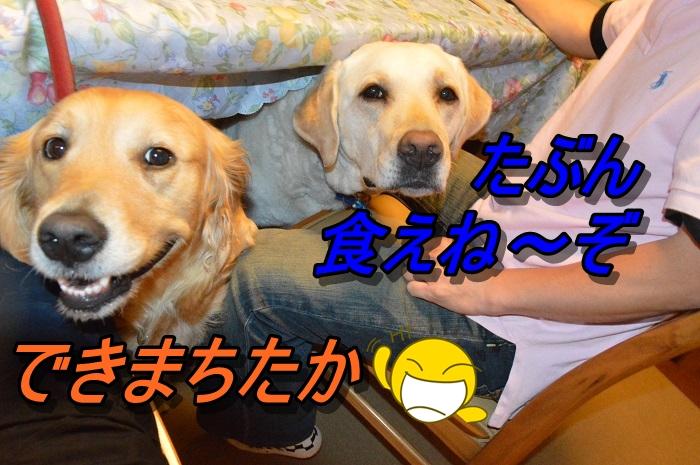 DSC_0642_20130602215306.jpg