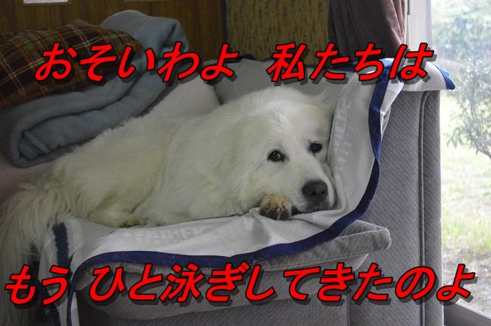 DSC_0670_20130714212822.jpg