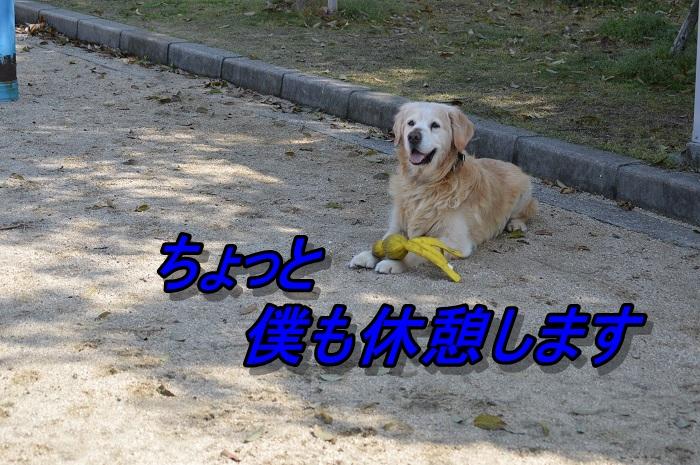 DSC_0725.jpg