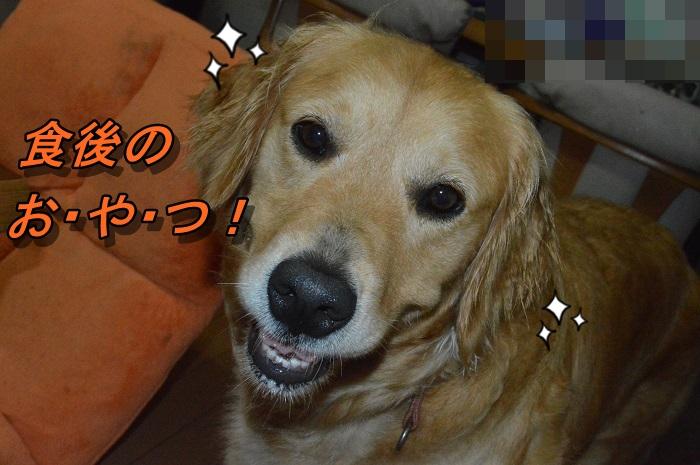 DSC_0993_20130621213934.jpg