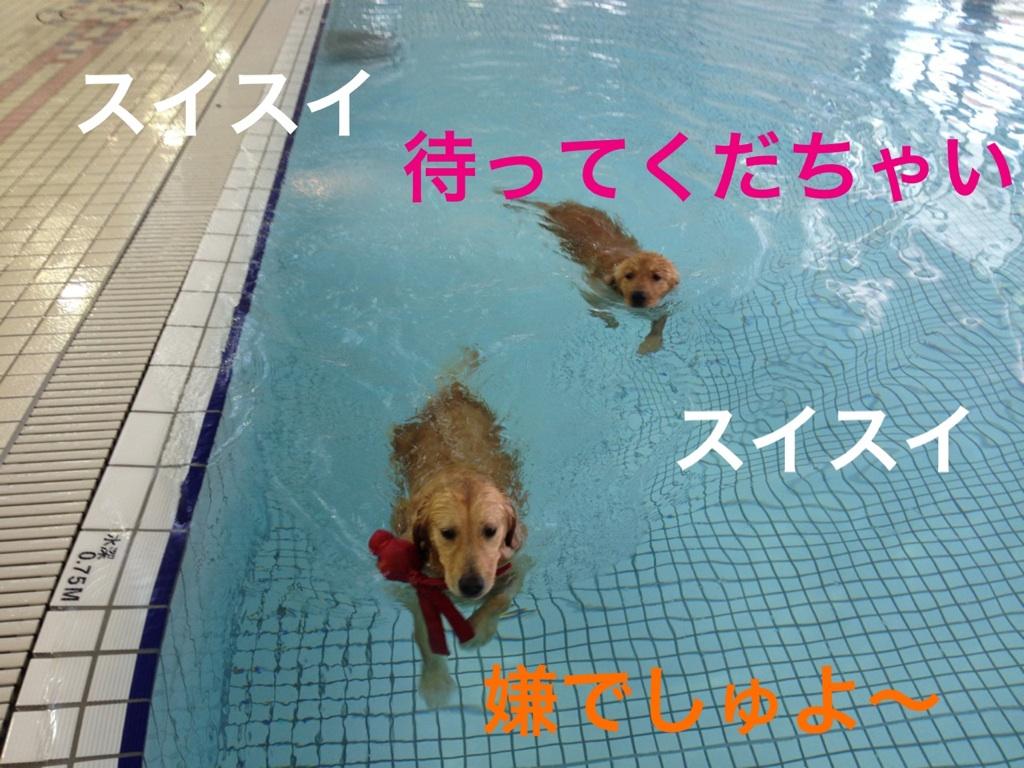 IMG_0619.jpg