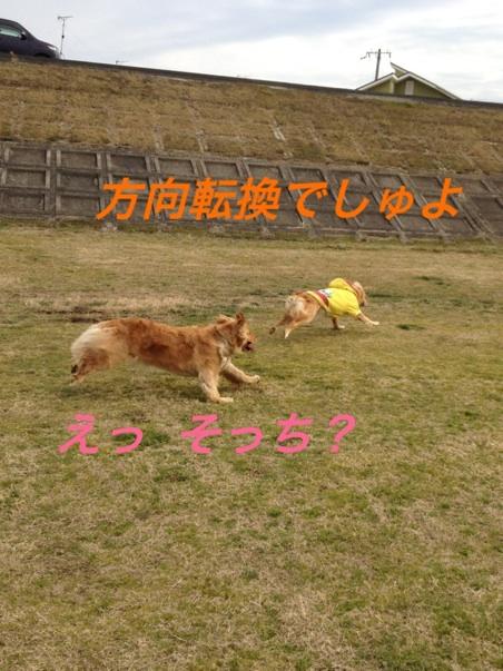 IMG_6052.jpg
