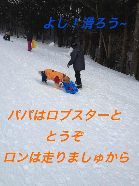 IMG_8231.jpg