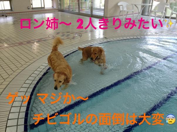 IMG_9808.jpg