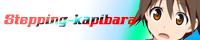Stepping Kapibara