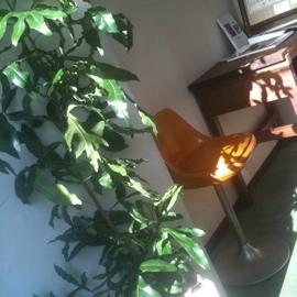 fc2blog_201212271647365cb.jpg