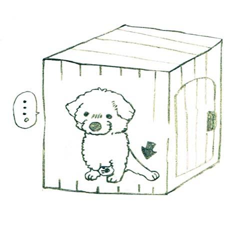 shiro_ashi1.jpg