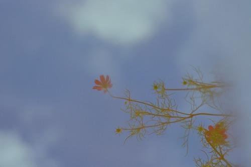 fc2012-09-15-005.jpg