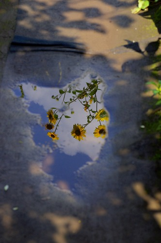 fc2012-09-15-006.jpg