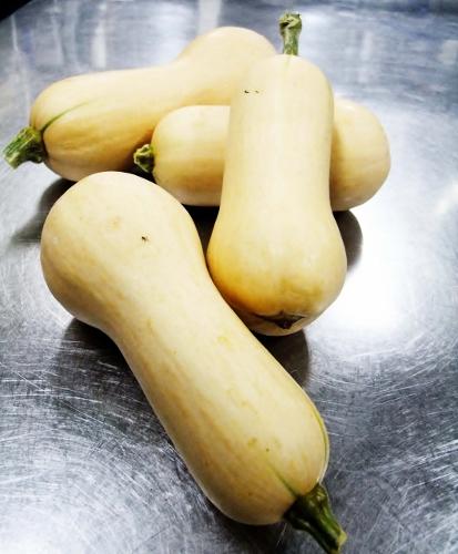 バターナッツカボチャ