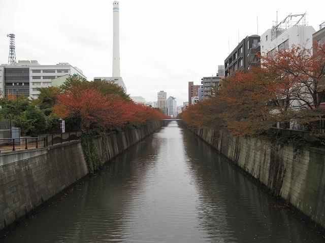 目黒川の流れ_2