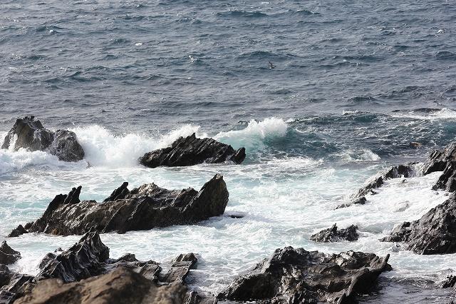 潮騒の丘の下の岩礁_2