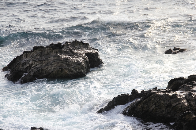 潮騒の丘の下の岩礁_8