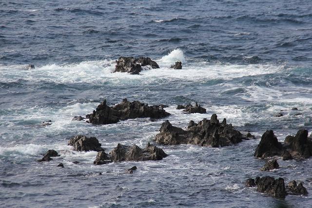 潮騒の丘の下の岩礁_13