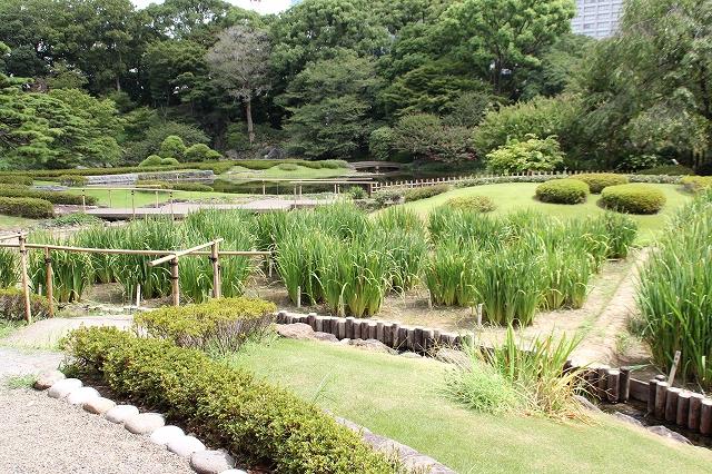 二の丸庭園_2