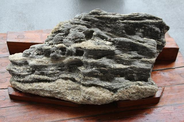 南極の石_1