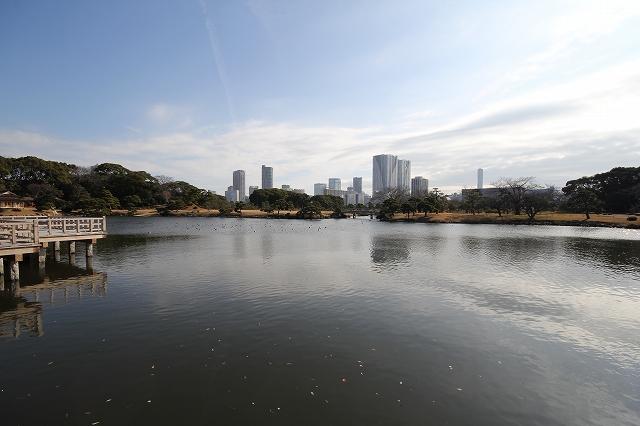 潮入りの池の様子_8