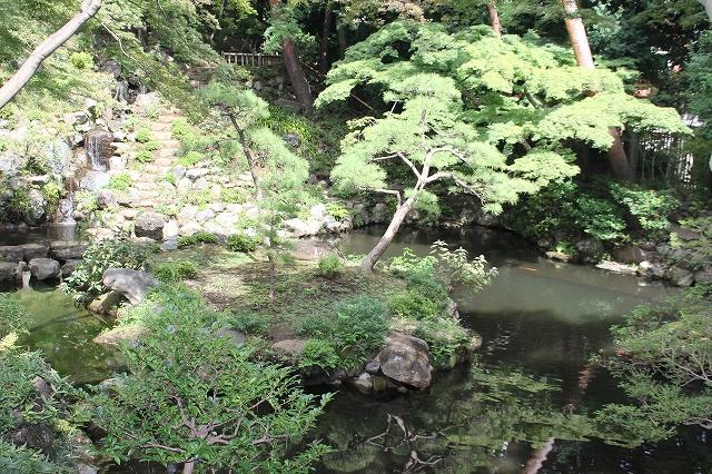 次郎弁天の池_1