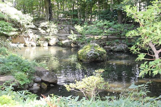 馬頭観音へ向かう道から見た次郎弁天の池