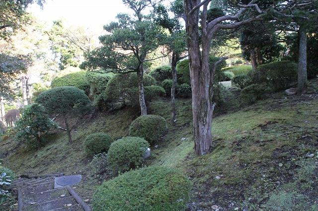 宿の庭_2