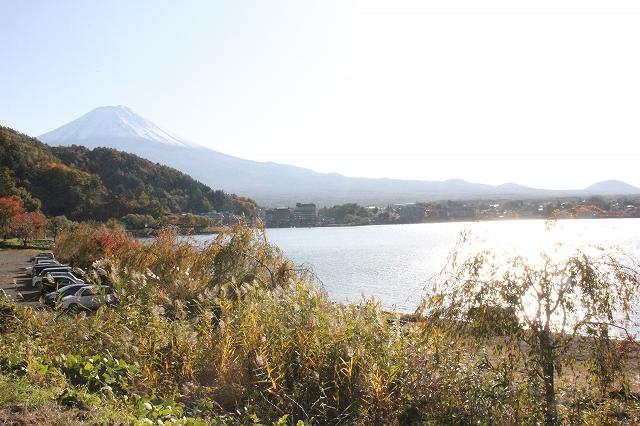 湖の様子_4