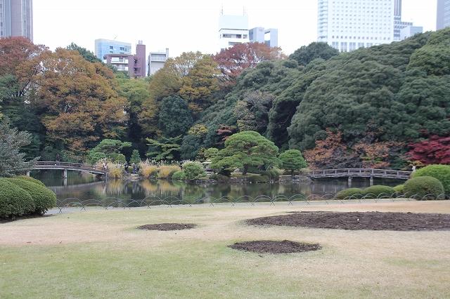 上の池_1