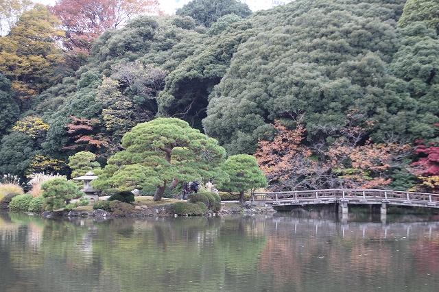 上の池_4