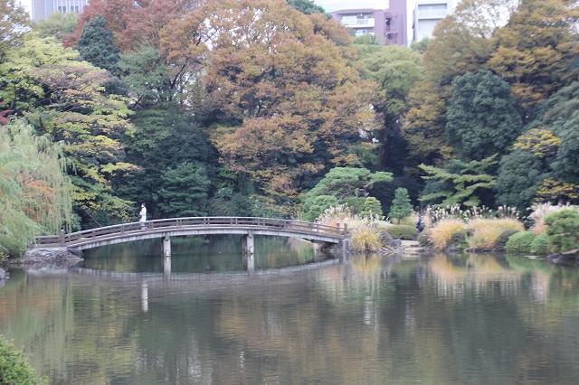 上の池_5