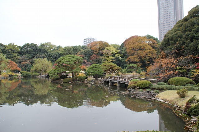 上の池_9