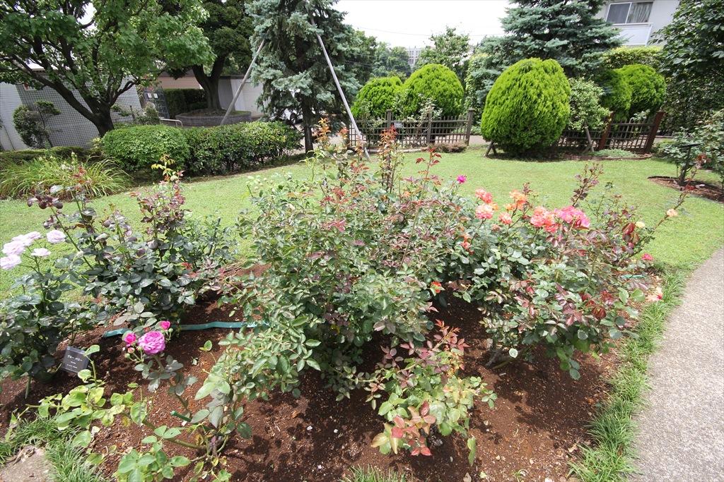 外交官の家《国指定の重要文化財》_イタリア山庭園_3