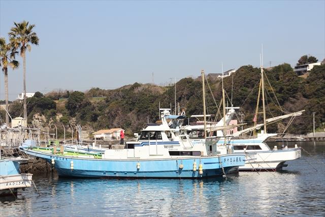 湾内に停泊中のヨット・漁船など_7