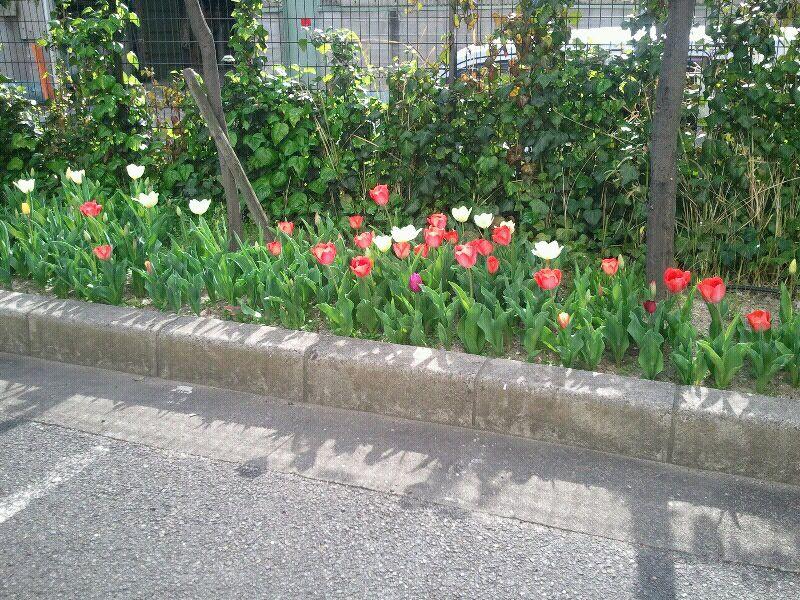 fc2_2013-04-01_15-28-25-447.jpg