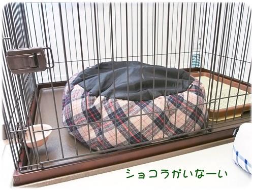 ラウンドベッド