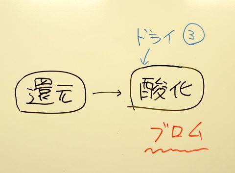 DSC07474.jpg